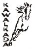 Kawalkada Ośrodek Jeździecki